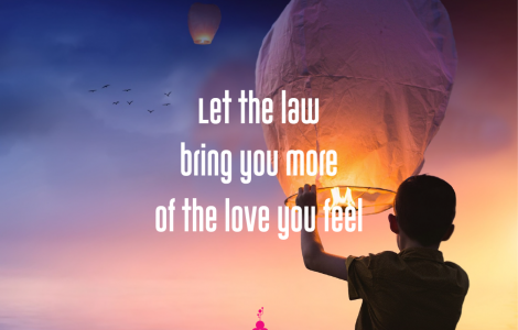 le the law bring you more