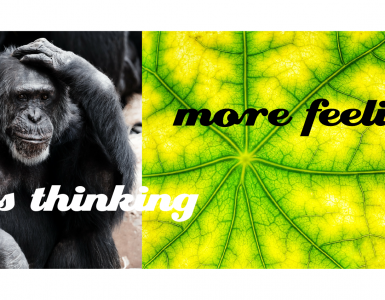less thinking more feeling
